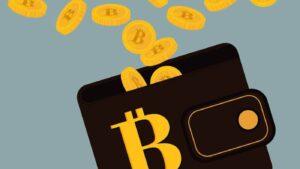 Goede bitcoin wallet